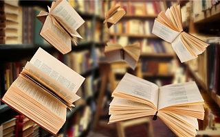 《2020网络文学出海发展白皮书》发布,10万名海外作者创作逾16万部作品