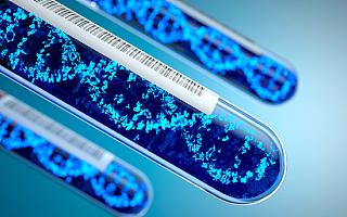 吸金超200亿, 医院外风靡、医院内艰难,基因检测凭什么?