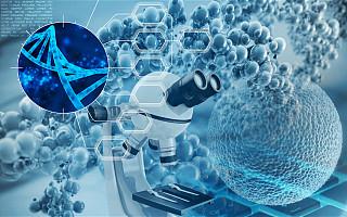 创新肿瘤靶向药物研发商科赛睿生物完成近3000万美元B轮融资