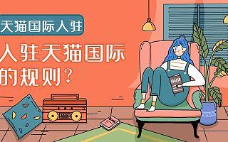 知舟集团:天猫国际入驻专营店解读