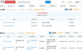 *ST成城:公司股票终止上市