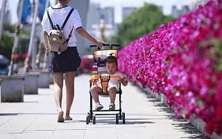 专访婴儿推车本土新锐品牌TOP1逸乐途:如何精准踩上每一波流量红利