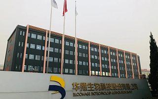 """中国""""玻尿酸"""":发端于科研实验室的产业版图"""