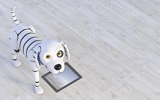 万物皆可AI,狗狗也不例外