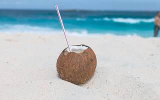 椰树集团被罚40万 招聘广告传递低俗观念 曾被电视台停播广告