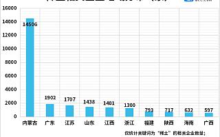 稀土永磁板块逆势大涨!上半年稀土企业注册量同比增长102%,内蒙古最多