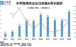 羊肉价格降幅超三成:羊养殖企业今年上半年注册量同比下跌34.5%