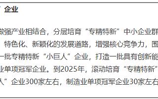 """上海:到2025年""""专精特新""""小巨人企业增至300家"""