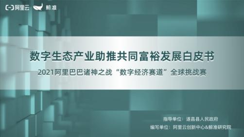 《数字生态产业助推共同富裕发展白皮书》重磅发布