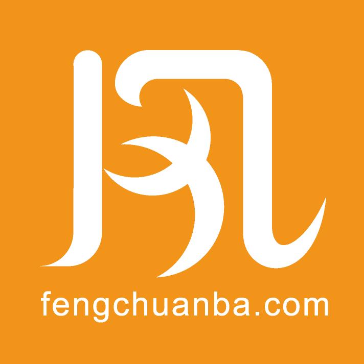 上海翅风信息科技有限公司