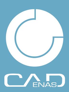 卡第那思软件技术(上海)有限公