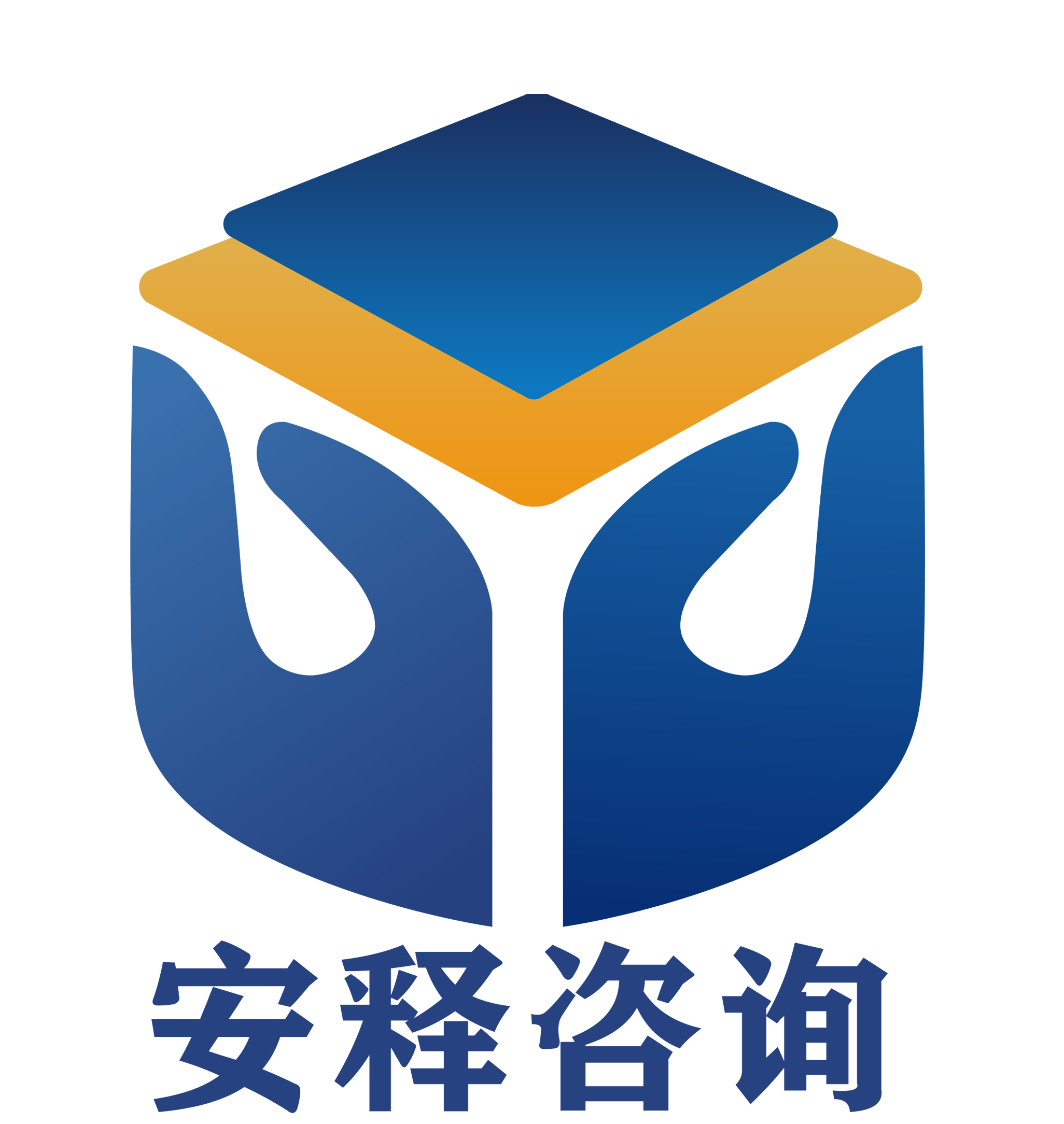 上海安释信息咨询有限公司