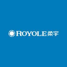 柔宇科技Royole